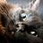 IreneS4lv4r4ni's avatar