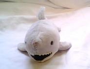 Sharkus pic