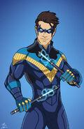 Nightwing Variant 1
