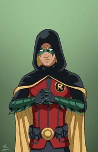 Robin V (Hooded)