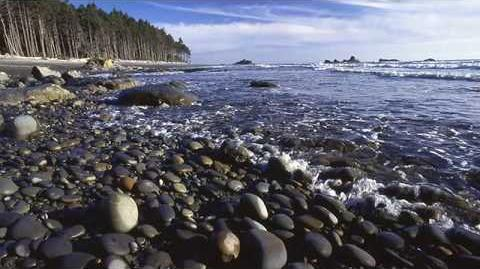 O Cascadia - A Folk Song for the Pacific Northwest and All Our Relations