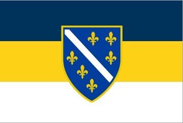 The European Shield Alliance
