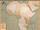 AfricaDarya.png