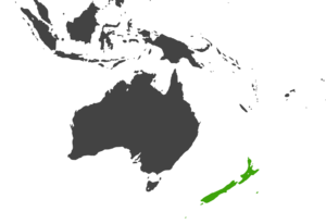 NZ Territory.png
