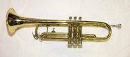 Sonia's Trumpet