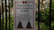 Albert Square Christmas Tree Sign (19 December 2016)
