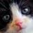 ItsSmuug's avatar