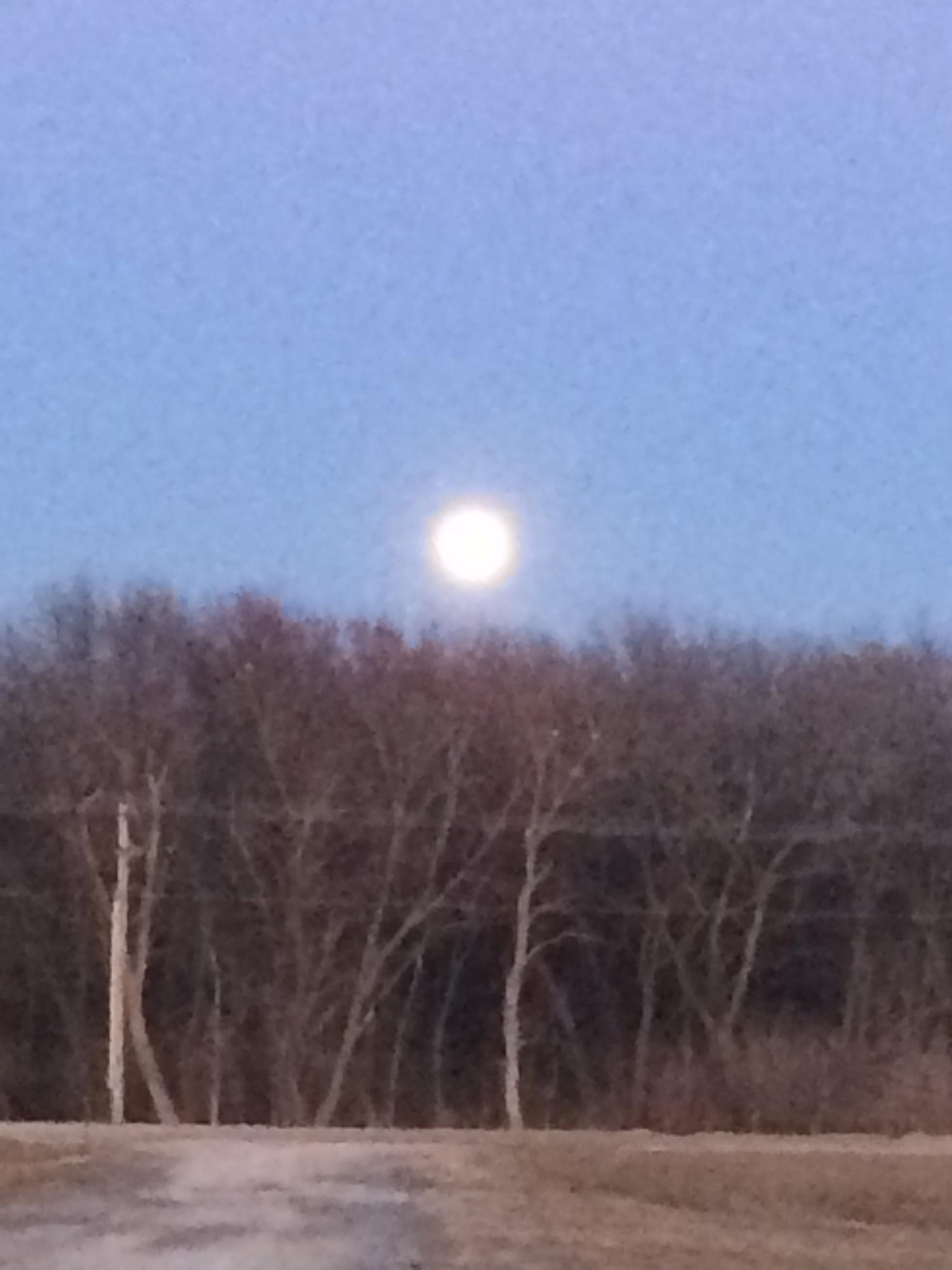 Praise the moon