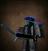 Mechx4arceus's avatar