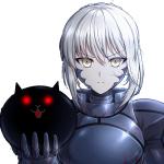 Saber Alter CC's avatar