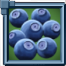 Huckleberries Icon.png