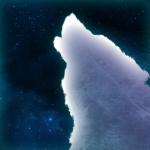 JJTheGalaxyWolf's avatar