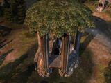 Mirkwood Outpost