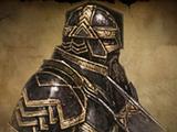 Veterans of Khazad-dûm