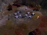 Exile Camp