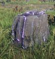 Rock shiny.png