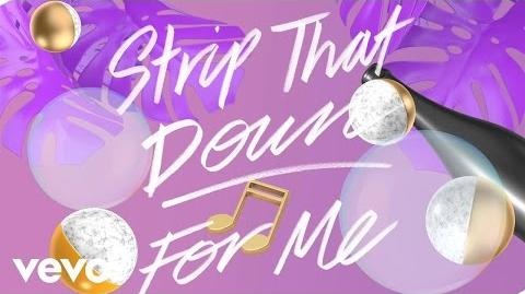 Liam Payne - Strip That Down ft. Quavo (Lyric Video) ft