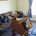 JdBoi2187's avatar