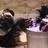 NoodleNinja1's avatar