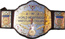 An image of the DAW Universal Championship.