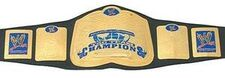 An image of the DAW Tag Team Championship.