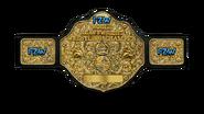 FZW World Heavyweight Championship