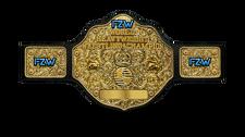 An image of the FZW World Heavyweight Championship.