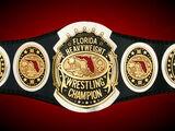 NXT-X Pan Handle Championship