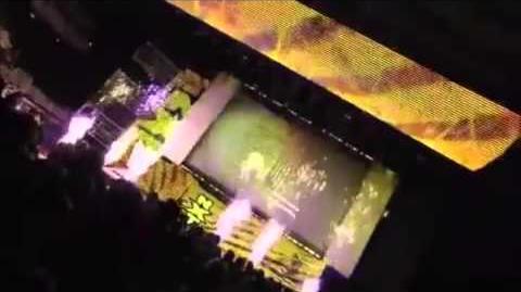 NXT-X Nitro