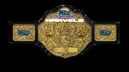 FZW Chaos Marvels Championship