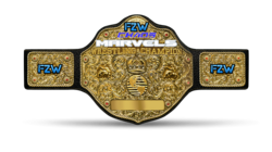 FZW Chaos Marvels Championship.png