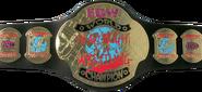 RWA Extreme Championship