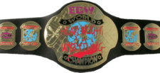 An image of the RWA Extreme Championship.