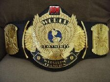 An image of the UEW Championship.