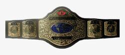 CWA Breakthrough Champion.jpg