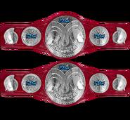 FZW Havok Tag Team Championships