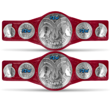 An image of the FZW Havok Tag Team Championships.