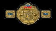 FZW Havok Championship