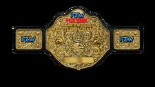 An image of the FZW Havok Championship.