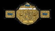 Undisputed FZW Marvels Championship