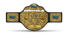 An image of the FZW Marvels World Championship.