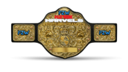 FZW Havok Marvels Championship