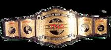 An image of the RWA Super Rage Tag Team Championship.