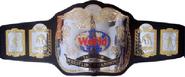 Singular EWA World Tag Team Championship