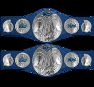 FZW Chaos Tag Team Championships