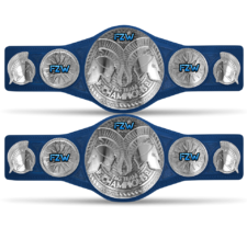 An image of the FZW Chaos Tag Team Championships.