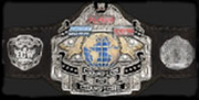 E-Fed Champion of Champions.png