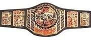 An image of the ECDL World Tag Team Championship.