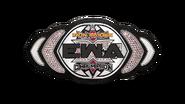 EWA Iron Maiden Championship