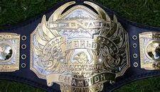 An image of the XWE World Championship.